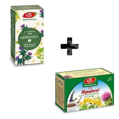 Ceai Protector Hepatic, 20 plicuri, Fares